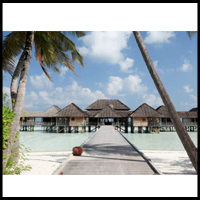 Soneva Gili & Six Senses Spa  logo